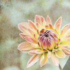 Impression: Flower by Jessica Manelis