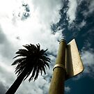 """Palm tree (from the """"We win"""" series) by BrainCandy"""
