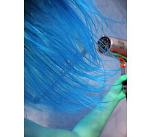 Blue Chicks Rule Photographic Print