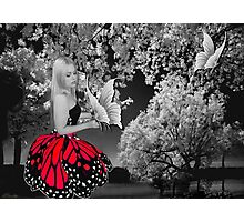 Ƹ̴Ӂ̴Ʒ BUTTERFLY WISHES PICTURE/CARD Ƹ̴Ӂ̴Ʒ Photographic Print