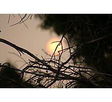 Bush Fire Smoke Photographic Print