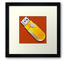 USB Framed Print