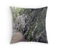 Gloss Moss Throw Pillow