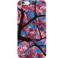Cherry blossom against blue sky iPhone Case/Skin