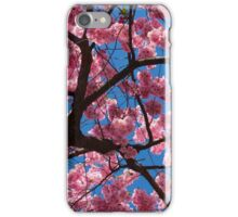 Cherry blossom against blue sky iPhone Case/Skin