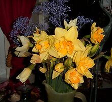 Daffodills in Hall straight from the camera by hilarydougill