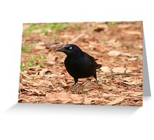 Zommon grackle Greeting Card