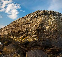Rock on the Beach - Middletown, Rhode Island by Jim Haley