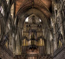 Back Of The Organ by Dave Warren