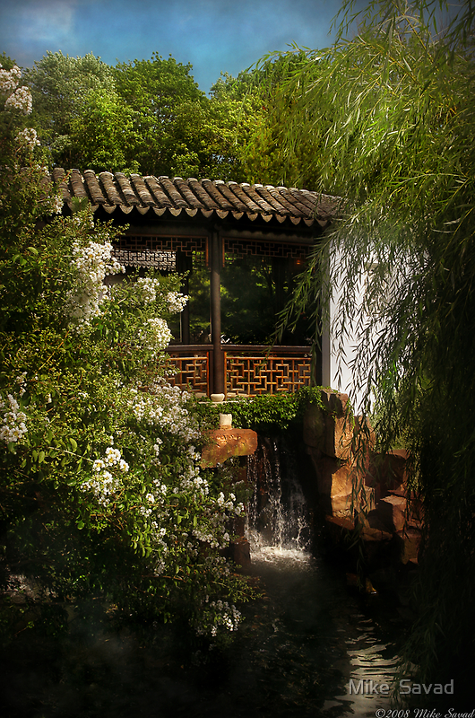 Little Chinese bridge by Mike  Savad