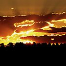 Burning sunset by K.D. Hemi