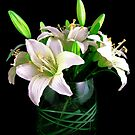 Silk Flowers on Black by Mark Wilson