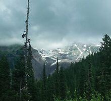 Mount Rainier by skyekathryn