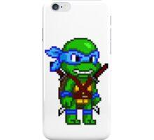 Leonardo Leads iPhone Case/Skin
