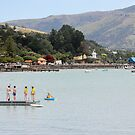 Akaroa, New Zealand. by Mike Warman