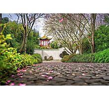 Chinese Scholar Garden Photographic Print