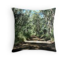 Road up Spicer's Gap Throw Pillow