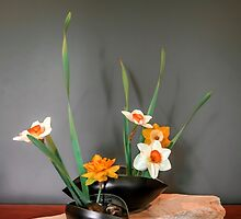 Daffodil ikebana in two containers by Alexander Evans