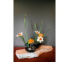 Daffodil ikebana in two containers Photographic Print
