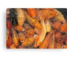 Fish soup Canvas Print