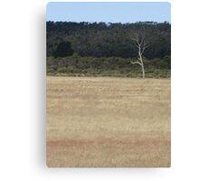 lonely landscape Canvas Print