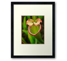 Better to Eat You With © Framed Print
