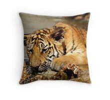 Bengal Tiger Cub Playing Throw Pillow