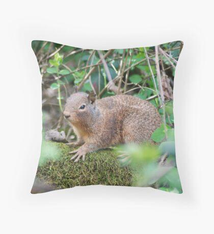 Ground Squirrel, Penn Valley, CA Throw Pillow