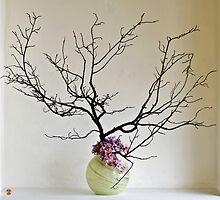Ikebana-049 by Baiko