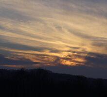 A December Sunset by vigor