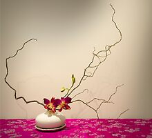 freestyle ikebana flower arrangement - orchid & willow by Alexander Evans