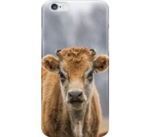 Cow 1 iPhone Case/Skin