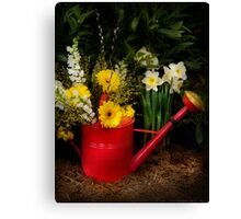 Watering can Canvas Print