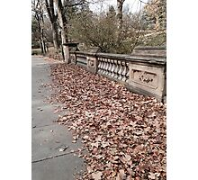 Autumn on a Central Park Bridge Photographic Print