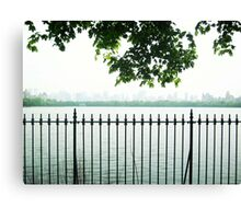 Trees Over CP Reservoir Fence Canvas Print