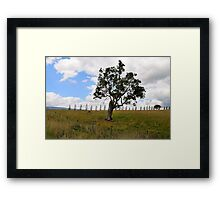 Dont Fence Me In - Little Hartley , Blue Mountains , NSW Australia Framed Print