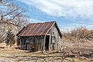 Old Shed II by PhotosByHealy
