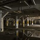 industrial basement by rob dobi