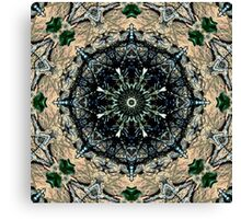Set in Stone Canvas Print