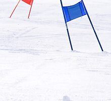 Slalom Gates by Walter Quirtmair