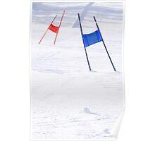 Slalom Gates Poster
