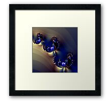 Desert Jewels Framed Print