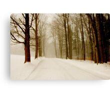 Drive Through The Storm Canvas Print