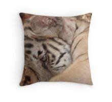 Tiger Temple Thailand - Kanchanaburi - Cubs #1 Throw Pillow