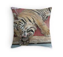 Tiger Temple Thailand - Kanchanaburi - Cubs #3 Throw Pillow
