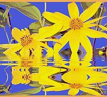 Flowers in Water by jhell2