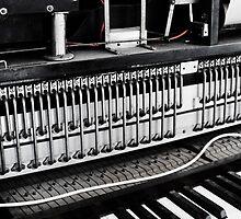 The Pianola by MagnusAgren