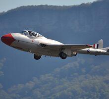 Vampire @ Albion Park Airshow, Australia 2012 by muz2142