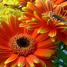 Flowers from my date... by LjMaxx