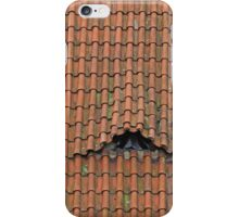 Roof Eyes iPhone Case/Skin
